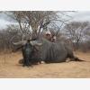 Jaquandi Safaris (6492)