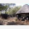 Chimoyo Wildlife & Safaris (6675)