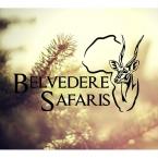 Belvedere Safaris - Logo