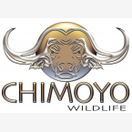 Chimoyo Wildlife & Safaris - Logo